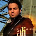 پخش و دانلود آهنگ بازم دلم گرفته از علی عبدالمالکی