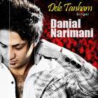پخش و دانلود آهنگ دل تنهام از دانیال نریمانی