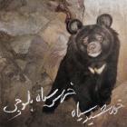 پخش و دانلود آهنگ خرس سیاه بلوچی از گروه خورشید سیاه