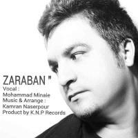 پخش و دانلود آهنگ ضربان از محمد مینایی