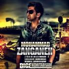 پخش و دانلود آهنگ دیگه نمی ترسم از محمد زنگنه