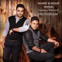 پخش و دانلود آهنگ دلتنگم با حضور حسام حیدری از حامد حیدری