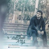 پخش و دانلود آهنگ نیستی کنارم از فرزاد شیرمحمدی
