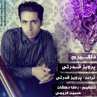 پخش و دانلود آهنگ دلگیرم از پرویز قدرتی