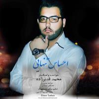 پخش و دانلود آهنگ احساس تنهایی از محمد قدیرزاده