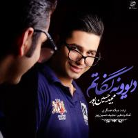 پخش و دانلود آهنگ دیونه نگاتمو از مجید حسین پور