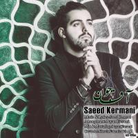 پخش و دانلود آهنگ آقا جون از سعید کرمانی