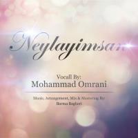 پخش و دانلود آهنگ Neylayimsan از محمد عمرانی