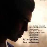 پخش و دانلود آهنگ آره دلم میخواد از امیر محمدی