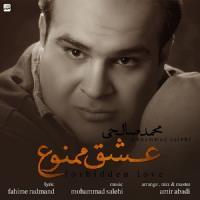 پخش و دانلود آهنگ عشق ممنوع از محمد صالحی