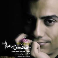 پخش و دانلود آهنگ نگو نه از محسن ابراهیم زاده