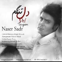 پخش و دانلود آهنگ دلتنگم از ناصر صدر