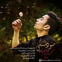 پخش و دانلود آهنگ منو دلتنگی از محسن ابراهیم زاده