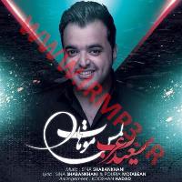 پخش و دانلود آهنگ لمس موهات از سعید عرب