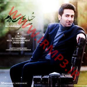 پخش و دانلود آهنگ خیلی دوست دارم از محمد صادقی