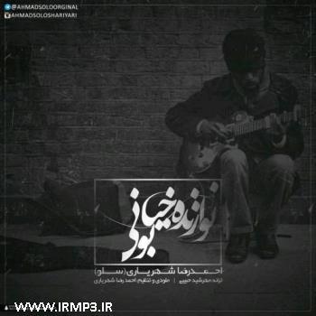 دانلود و پخش آهنگ نوازنده خیابونی از احمد سولو