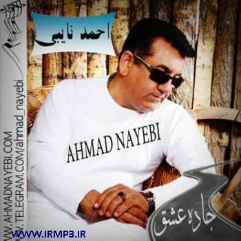 پخش و دانلود آهنگ جاده عشق از احمد نایبی