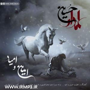 پخش و دانلود آهنگ علمدار حسین از امین و امید