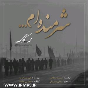 پخش و دانلود آهنگ شرمنده ام از محمد کلاهچی