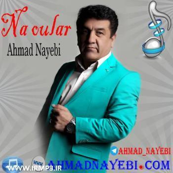 پخش و دانلود آهنگ نه اولار از احمد نایبی