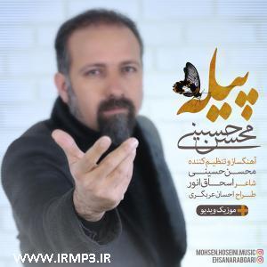پخش و دانلود آهنگ پیله از محسن حسینی
