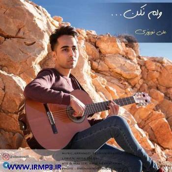 پخش و دانلود آهنگ جدید ولم نکن از علی نوروزی