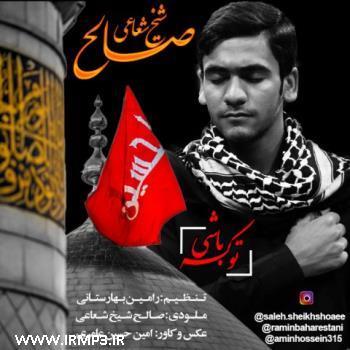 پخش و دانلود آهنگ جدید تو که باشی از صالح شیخ شعاعی