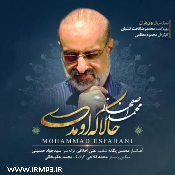 پخش و دانلود آهنگ حالا که اومدی از محمد اصفهانی