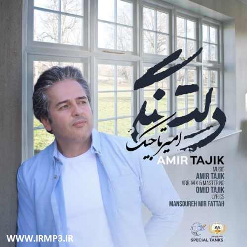 پخش و دانلود آهنگ دلتنگی از امیر تاجیک
