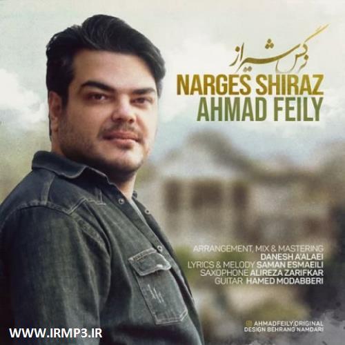 پخش و دانلود آهنگ جدید نرگس شیراز از احمد فیلی